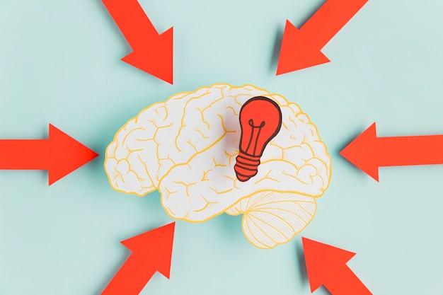 Papier hersenen met pijlen wijzen Gratis Foto