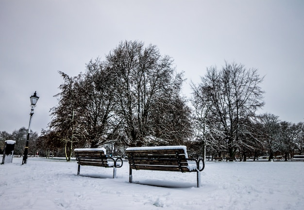 Park van engeland na een zware sneeuw Premium Foto
