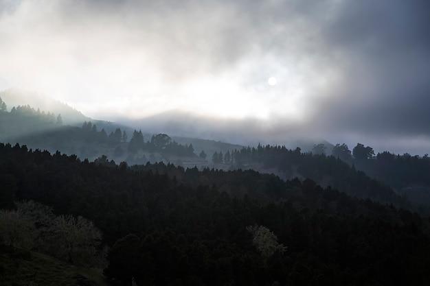 Parque natural de pilancones op gran canaria Premium Foto