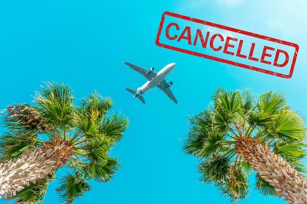 Passagiersvliegtuig vliegt boven de palmbomen tegen de blauwe hemel. Premium Foto