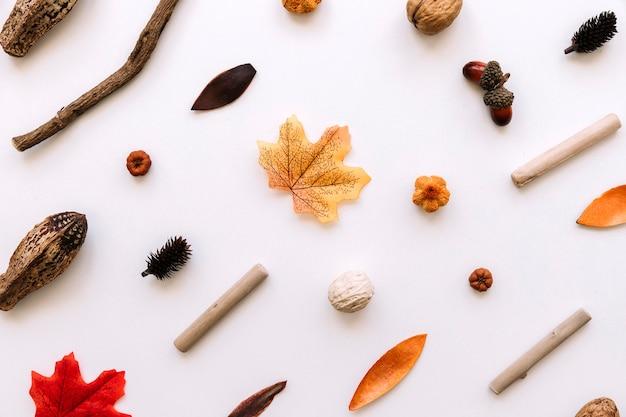 Patroon met herfst elementen Gratis Foto