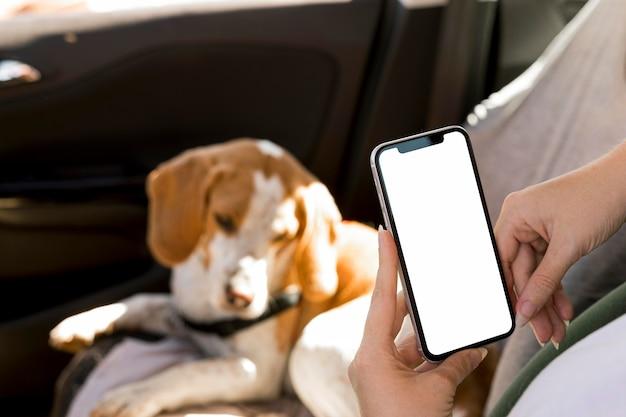 Persoon die een mobiele telefoon en vage hond op achtergrond houdt Gratis Foto
