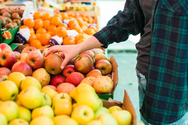 Persoon die fruit en groenten koopt Premium Foto