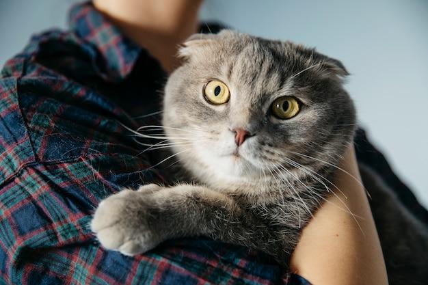 Persoon die schotse kat omhelst Gratis Foto