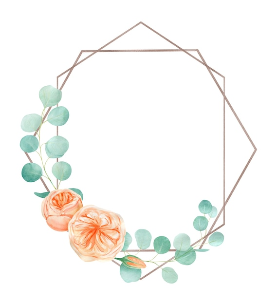Perzik en oranje aquarel rose flower frame met engelse rose austin en eucalyptus. Premium Foto