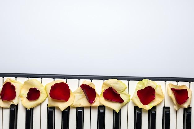 Pianosleutels met rode en witte roze bloembloemblaadjes, geïsoleerde, hoogste mening, exemplaarruimte. Premium Foto