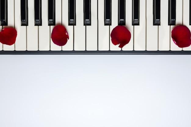 Pianosleutels met rode roze bloembloemblaadjes, geïsoleerde, hoogste mening, exemplaarruimte. Premium Foto