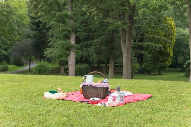 Picknick die op deken over groen gras plaatst Gratis Foto