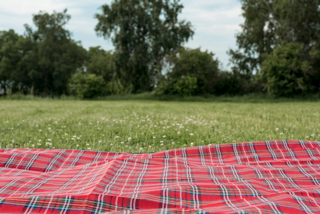 Picknickdeken op parkgras Gratis Foto