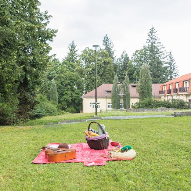 Picknickmand; gitaar op deken over het groene gras Gratis Foto