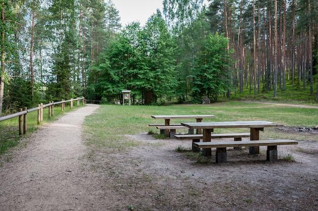 Picknickplaats in bos met tafels en banken op een wandelpad naast de sietiniezis-rots. gauja nationaal park. letland. oostzee. Premium Foto