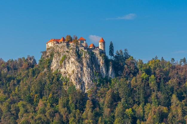 Pittoresk uitzicht op het beroemde kasteel van bled. Premium Foto
