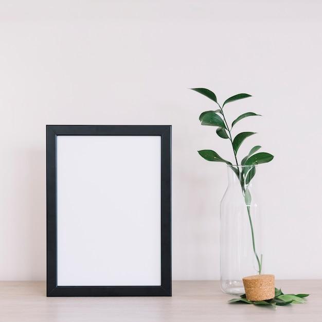 Plant en een frame Gratis Foto