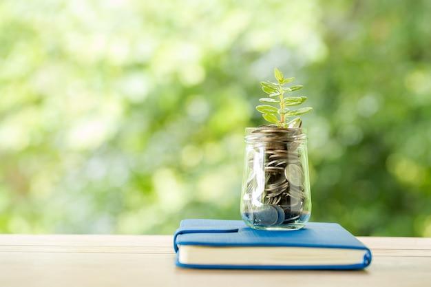 Plant groeit van munten in de glazen pot op wazig aard Gratis Foto