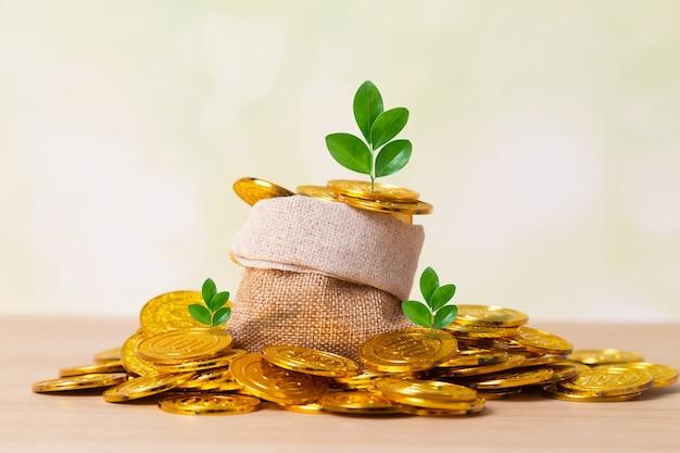 Planten groeien tussen munten Premium Foto
