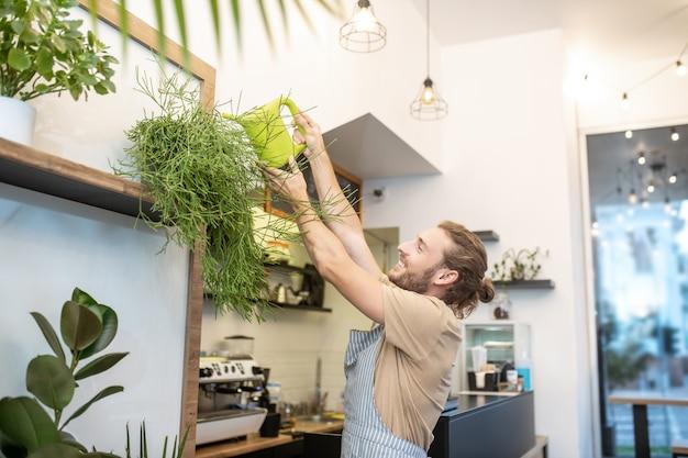 Planten verzorgen. gelukkig man in schort verhogen van zijn handen met gieter gieter plant staande hoog op de plank Premium Foto