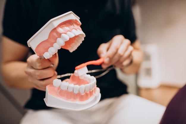 Plastic kaak bij een tandheelkundige kliniek Gratis Foto