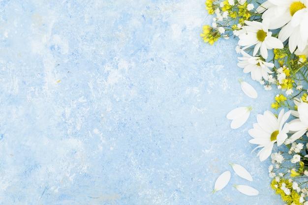 Plat lag floral frame met stucwerk achtergrond Premium Foto