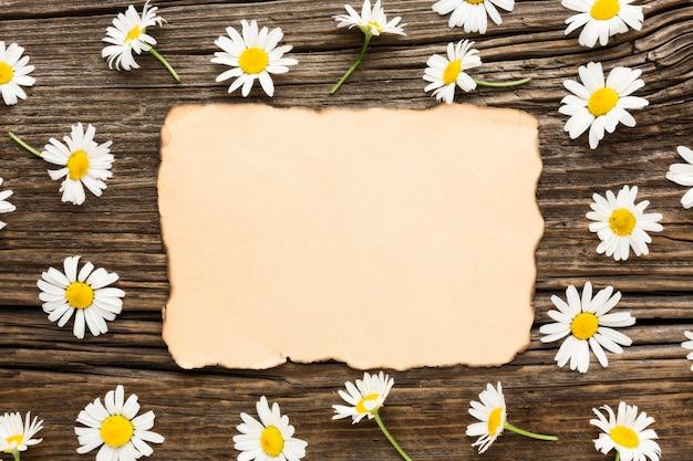Plat lag madeliefjes met blanco verbrand papier Gratis Foto