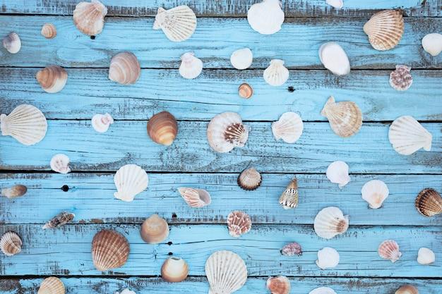 Plat lag schelpen op houten bord Gratis Foto