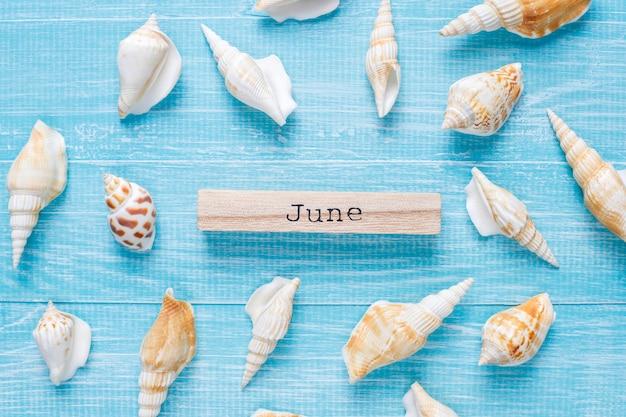 Plat lag zomersamenstelling met zeeschelpen Gratis Foto