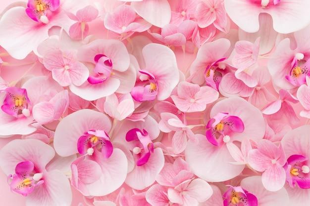 Plat leggen roze orchideeën en hortensia Premium Foto