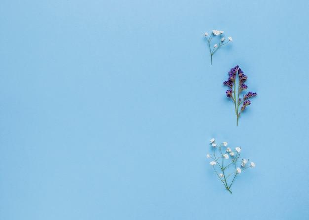Plat leggen sierbloemen met kopie ruimte Gratis Foto