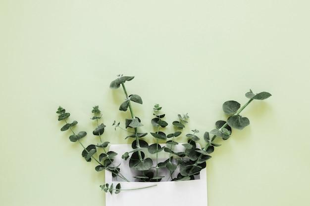 Plat leggen van bladeren met copyspace Gratis Foto