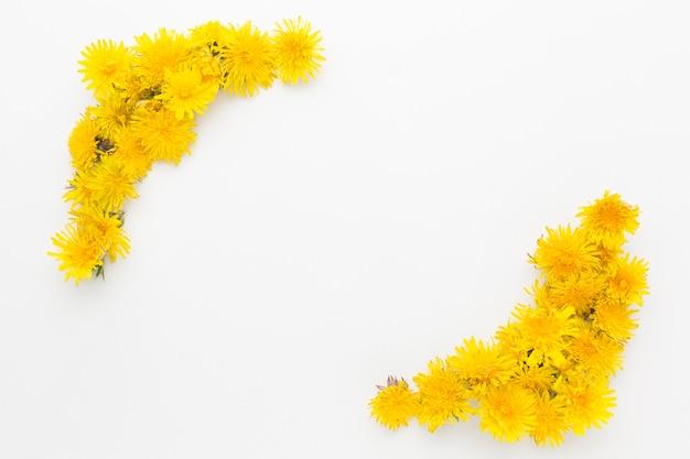 Plat leggen van gele bloem frame met kopie ruimte Gratis Foto
