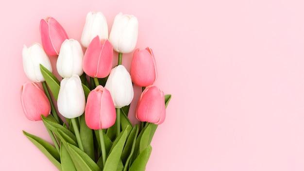 Plat leggen van tulpenboeket met kopie ruimte Gratis Foto