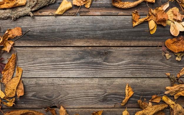 Plat liggende frame met gedroogde bladeren en kopie-ruimte Gratis Foto