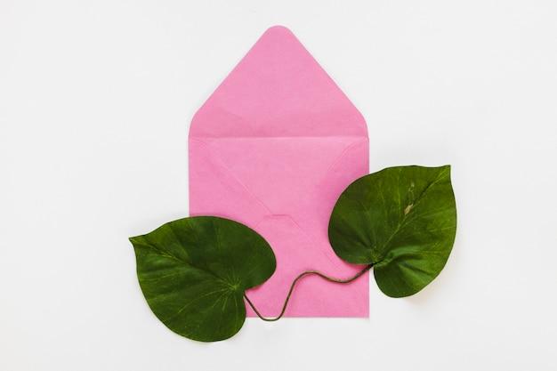 Plat van bladeren op de envelop Gratis Foto