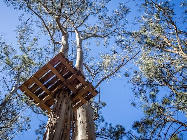 Platform van hout Gratis Foto