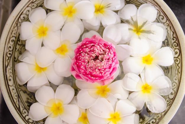 Plumeria spa bloemen over water met roze lotusbloem op hoogste mening, nadruk op lotusbloem Premium Foto