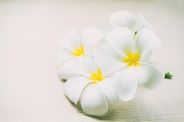 Plumeria verse bloemen of frangipani tropische bloemen op houten lijst Premium Foto