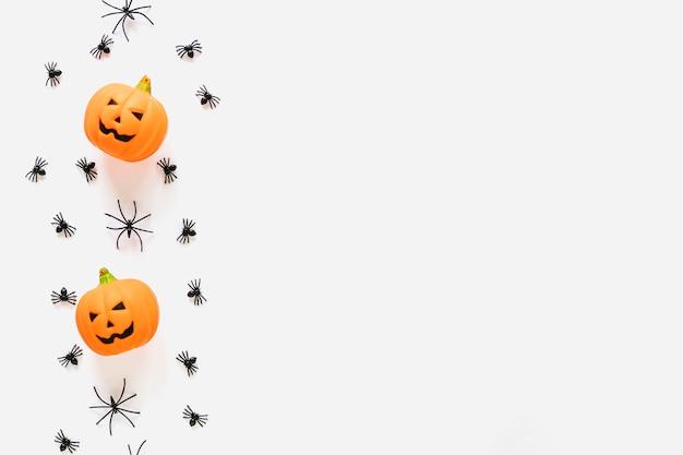 Pompoenen en spinnen in rij gelegd Gratis Foto
