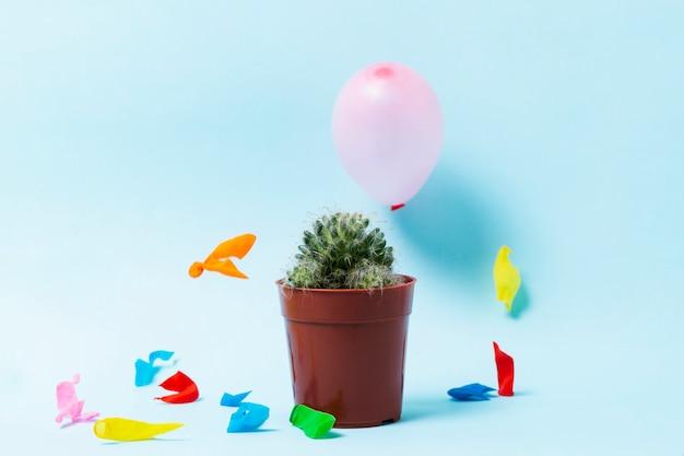 Popped ballonnen en cactus op blauwe achtergrond Gratis Foto