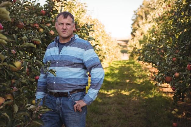 Portret die van landbouwer zich in appelboomgaard bevinden Gratis Foto