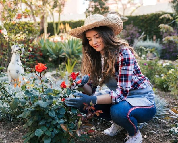 Portret van een vrouwelijke tuinman die de roze installatie met snoeischaar snijdt Gratis Foto