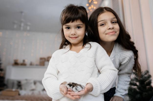 Portret van slepen die kleine zusters charmeert die in comfortabele ruimte met kerstmisdecor stellen Gratis Foto