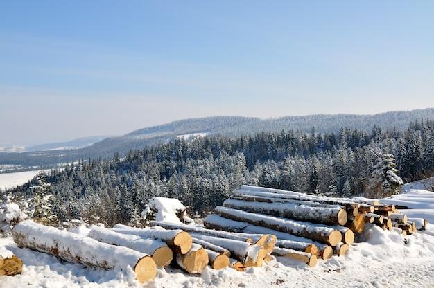 Prachtig berglandschap met besneeuwde bomen in de en met sneeuw bedekte boomstammen Premium Foto
