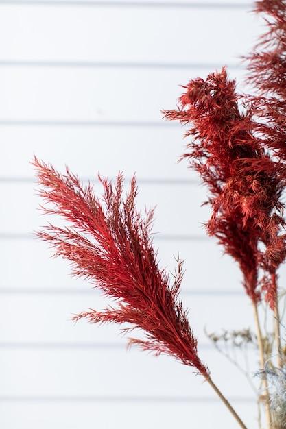 Prachtig boeket van mooi van geverfd gras. het werk van de bloemist. bloemen levering. Premium Foto