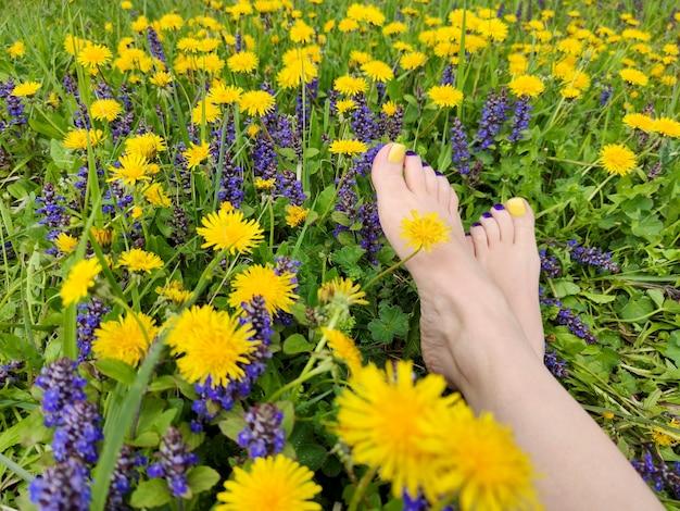 Prachtig gekleurde gele, blauwe, paarse pedicure op vrouwelijke voeten met verschillende zomerbloemen op het veld. Premium Foto