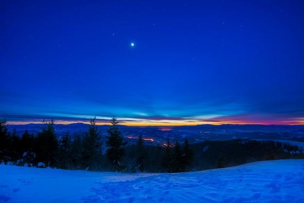 Prachtig landschap met majestueuze hoge dennenbomen die groeien tussen witte sneeuwlaag tegen de blauwe lucht op een zonnige ijzige winterdag Premium Foto