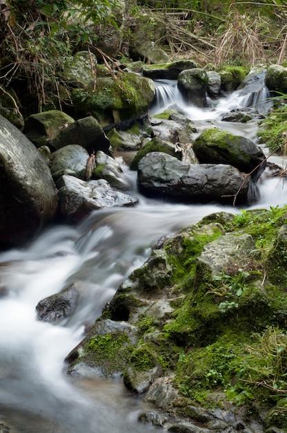 Prachtig landschap van een krachtige waterval in het bos in de buurt van rotsformaties Gratis Foto