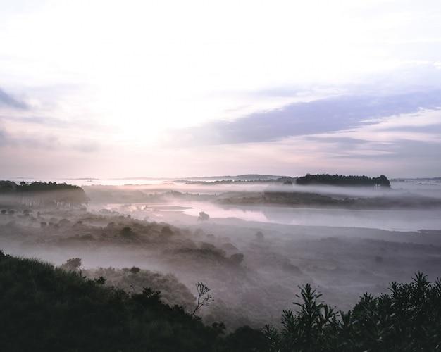 Prachtig landschap van een rivier in een bergachtig bos bedekt met mist in zuid-kennemerland Gratis Foto