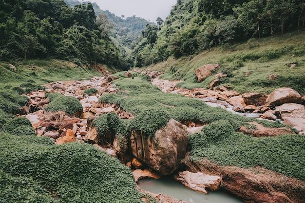 Prachtig natuurlijk landschap op riviervallei Premium Foto