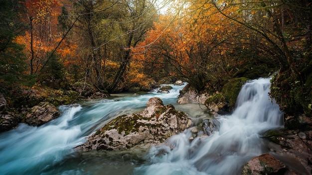 Prachtig schot van triglav nationaal park, slovenië in de herfst Gratis Foto