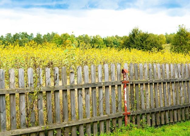 Prachtig shot van het veld vol gele bloemen en bomen achter het oude houten hek Gratis Foto