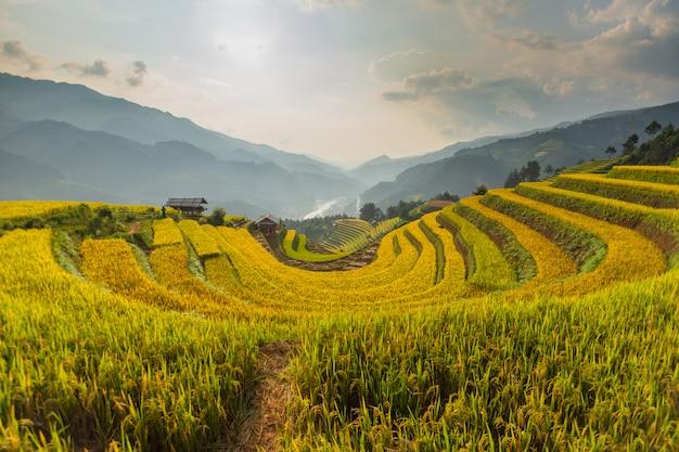 Prachtig uitzicht op rijstterras (doi mong ngua, diem chup lua view point) in mu cang chai, vietnam, landbouwer implant op hoge berg. Premium Foto
